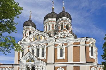 Alexander Nevsky Orthodox Cathedral, Tallin, Estonia, Baltic States, Europe