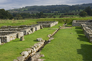 The main street with drainage channel and barrack blocks, Chesters Roman Fort, Hadrians Wall, UNESCO World Heritage Site, Northumbria, England, United Kingdom, Europe