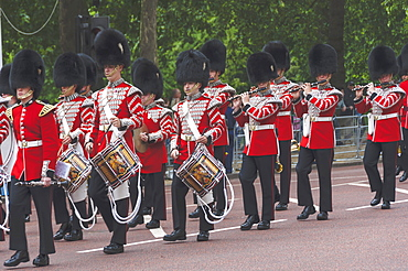 Guards Band, drums and pipes, marching to the Trooping of the Colour, The Mall, London, England, United Kingdom, Europe