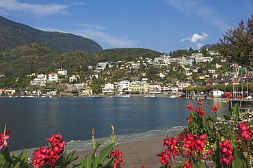 Ascona, Locarno, Lake Maggiore, Ticino, Switzerland, Europe