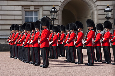 Coldstream Guards on parade during Changing of the Guard, Buckingham Palace, London, England, United Kingdom, Europe