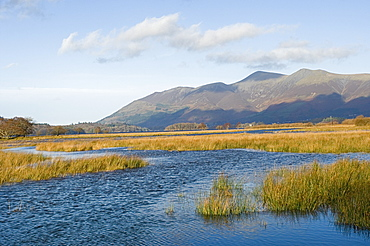 Derwentwater and Skiddaw, 3054ft, Lake District National Park, Cumbria, England, United Kingdom, Europe
