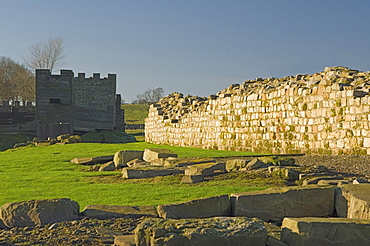 South wall of Roman Fort at Vindolanda, looking west to reconstruction, UNESCO World Heritage Site, Northumbria, England, United Kingdom, Europe