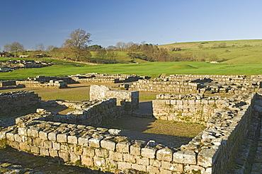Headquarters building, Roman settlement and fort at Vindolanda, Roman Wall south, UNESCO World Heritage Site, Northumbria, England, United Kingdom, Europe