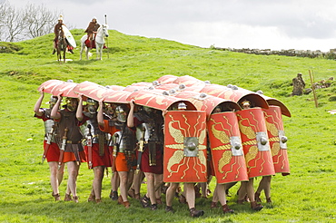 Ermine Street Guard advancing with protective shields, cavalry in attendance, Birdoswald Roman Fort, Hadrians Wall, Northumbria, England, United Kingdom, Europe