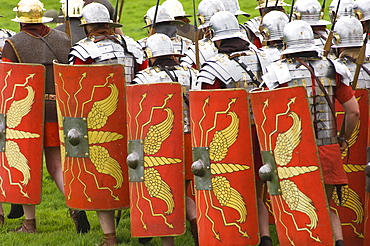 Roman soldiers of the Ermine Street Guard on the march, armour and shield detail, Birdoswald Roman Fort, Hadrians Wall, Northumbria, England, United Kingdom, Europe