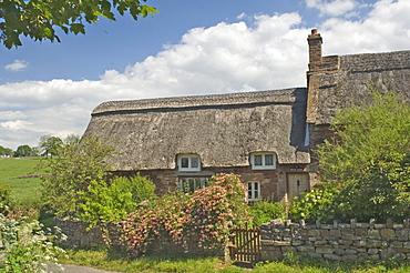 Original stone built and thatched cottage, circa 17th century, Eden Valley, Cumbria, England, United Kingdom, Europe