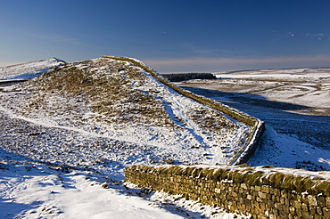 Looking west near Housteads Fort, Hadrians Wall, UNESCO World Heritage Site, Northumbria, England, United Kingdom, Europe