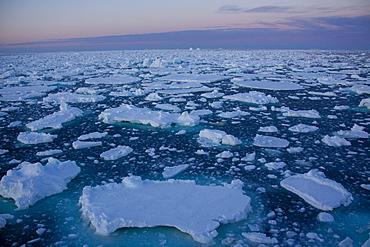 Pack ice at midnight, Southern Ocean, Antarctic, Polar Regions