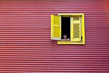 Child at a window, La Boca, Buenos Aires, Argentina, South America