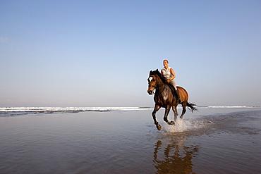 Horse riding at the beach, Kuta Beach, Bali, Indonesia, Southeast Asia, Asia