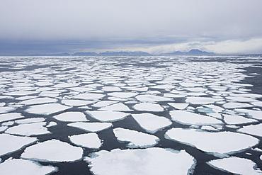 Ice floe, drift ice, Greenland, Arctic, Polar Regions