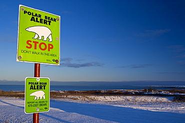 Sign, Polar bear alert at Hudson Bay, Churchill, Manitoba, Canada, North America