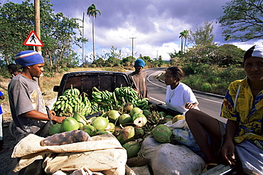 Vendors by the roadside selling bananas and coconuts off their pick-up, St. Lucia, Windward Islands, West Indies, Caribbean, Central America
