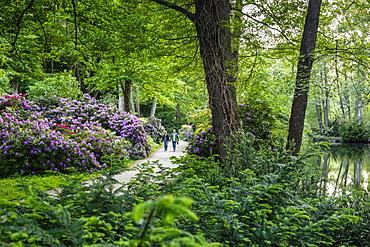 Tiergarten park, Berlin, Germany, Europe