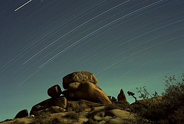 Time exposure at night, Joshua Tree National Park, California, United States of America (U.S.A.), North America