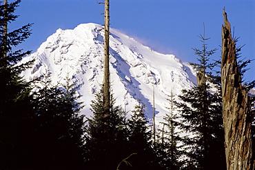Mount Rainier, Washington State, United States of America (U.S.A.), North America