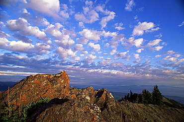 Rocks covered with lichen, Deer Park, Olympic National Park, UNESCO World Heritage Site, Washington State, United States of America (U.S.A.), North America
