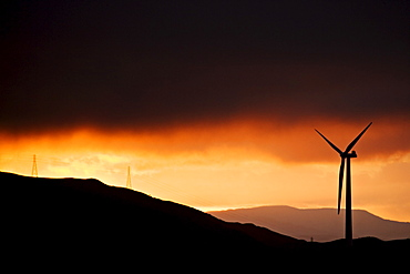 Windmill and power lines at dawn, part of a windfarm overlooking Palmerston North, Manawatu, North Island, New Zealand, Pacific