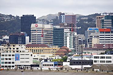 Wellington city viewed from the Interislander ferry, Wellington, North Island, New Zealand, Pacific