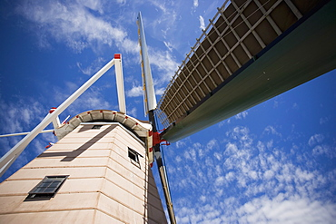 Functioning windmill still used to mill grain, Foxton, Manawatu, North Island, New Zealand, Pacific