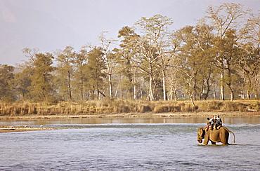 Guests at the Island Jungle Resort hotel take an elephant safari across a river, Royal Chitwan National Park, the Terai, Nepal, Asia