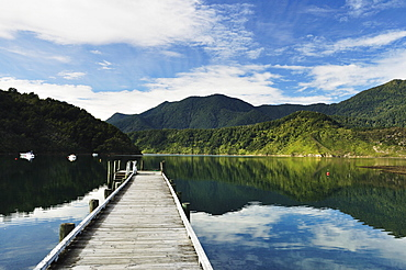 Penzance Bay, Tennyson Inlet, Marlborough Sounds, Marlborough, South Island, New Zealand, Pacific