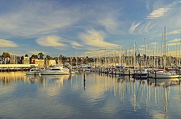 Sandy Bay, Hobart, Tasmania, Australia, Pacific