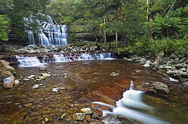 Liffey Falls, UNESCO World Heritage Site, Tasmania, Australia, Pacific