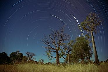 Star trails, Kimberley, Western Australia, Australia, Pacific