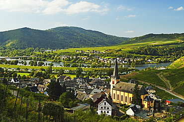 View of Senheim and Moselle River (Mosel), Rhineland-Palatinate, Germany, Europe