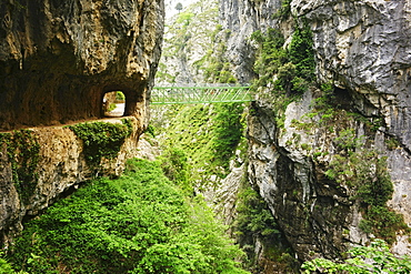 Footpath through the Desfiladero del Rio Cares, Picos de Europa, Parque Nacional de los Picos de Europa, Asturias, Cantabria, Spain, Europe