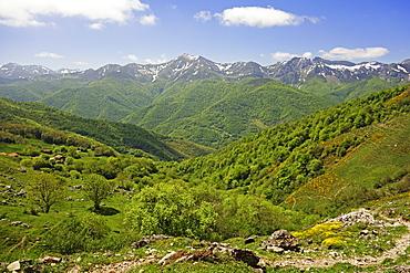 Fuente De, Picos de Europa, Parque Nacional de los Picos de Europa, Asturias, Cantabria, Spain, Europe