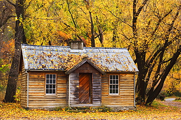Miner's hut, Arrowtown, Central Otago, South Island, New Zealand, Pacific - 756-312