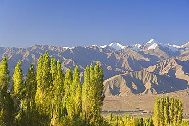 Indus Valley and Stok-Kangri massif, Leh, Ladakh, Indian Himalayas, India, Asia