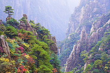 North Sea Scenic Area, Mount Huangshan (Yellow Mountain), UNESCO World Heritage Site, Anhui Province, China, Asia