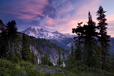 Landscape, Mount Rainier National Park, Washington State, United States of America, North America