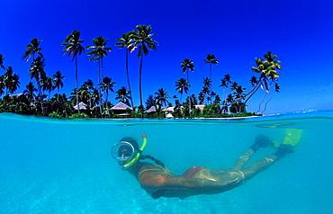 Snorkeling before Resort, Indonesia, Wakatobi Dive Resort, Sulawesi, Indian Ocean, Bandasea