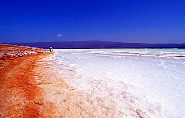 Lac Assal, Lake Assal, Djibouti, Djibuti, Africa, Afar Triangle
