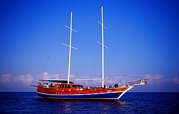 Liveaboard MV Deli, Djibouti, Djibuti, Africa, Afar Triangle, Gulf of Aden, Gulf of Tadjourah