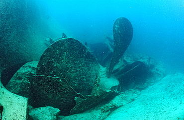 Massive propellor of ship wreck Astron, Punta Cana, Caribbean Sea, Dominican Republic, West Indies, Central America