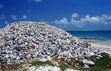 Conch houses on the beach, Netherlands Antilles, Bonaire, Bonaire
