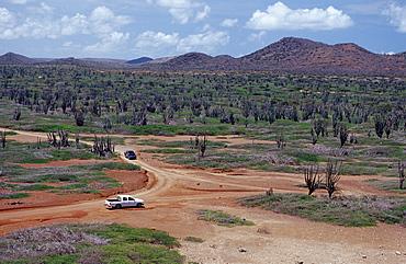 Desert landscape, Netherlands Antilles, Bonaire, Bonaire, Washington Slagbaai National Park