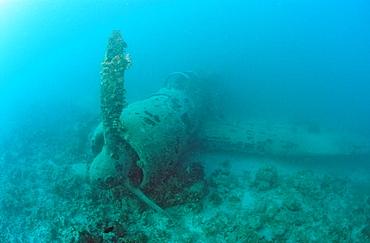 Nakajima B5N2 Kate Torpedo Bomber, Papua New Guinea, New Ireland, Kavieng