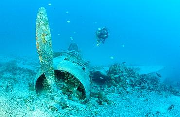 Nakajima B5N2 Kate Torpedo Bomber and Scuba diver, Papua New Guinea, New Ireland, Kavieng