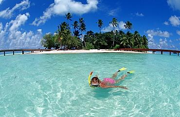 Snorkeling in Lagoon, Maldives, Indian Ocean, Medhufushi, Meemu Atoll