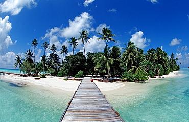 Maledivian Island, Maldives, Indian Ocean, Medhufushi, Meemu Atoll