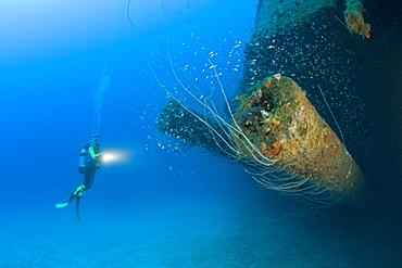 Diver at 12-inch Guns of USS Arkansas Battleship, Marshall Islands, Bikini Atoll, Micronesia, Pacific Ocean