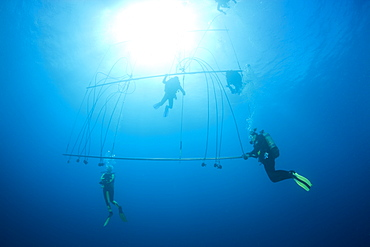 Divers decompress with Oxygen after deep Wreckdive at Decompression Trapeze, Marshall Islands, Bikini Atoll, Micronesia, Pacific Ocean