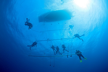 Divers at Decompression Trapeze after deep Wreckdive, Marshall Islands, Bikini Atoll, Micronesia, Pacific Ocean